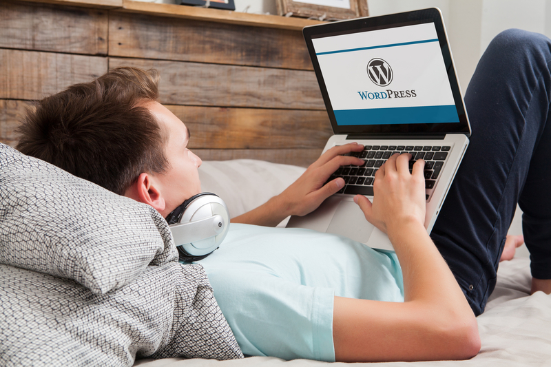 WordPress explained